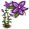 Royal Bluebell Single Bloom-icon