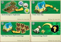 Sunshine Doghouse Informations