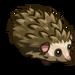 Hedgehog-icon