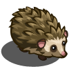 Hedgehog-icon