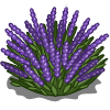 Lavender Bush-icon