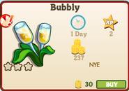 Bubbly Market Info