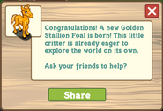 Golden stallion foal