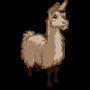 Found Llama