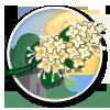 Lilac Sprig-icon