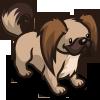 Pekingese-icon