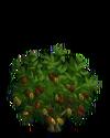 Cocoa2-icon