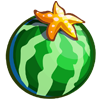 Star Watermelon-icon