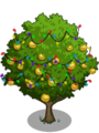 Asian Pear Tree6-icon.png