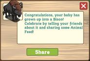 Bison Message