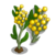 Golden Wattle-icon