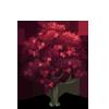 Norway Maple Tree-icon