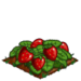 Super Berries extra100