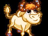 Boomerang Calf Buffalo