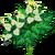 White Anthuriums-icon