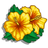 Yellow Hibiscus-icon