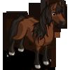 Australian Brumby Horse-icon