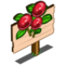 Teaberry Mastery Sign-icon