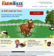 Dartmoore pony email