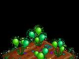 Balloons (crop)