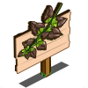 Choco Mint Mastery Sign-icon