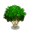 Hala Tree-icon