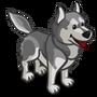 Husky Gray-icon