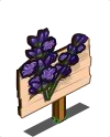 Lavender Mastery Sign-icon