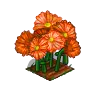 Perfect Orange Daisies-icon