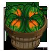 Acorn Squash Bushel-icon