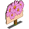 Pink Aster Mastery Sign-icon