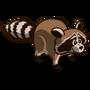Raccoon-icon