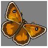 Gatekeeper-icon