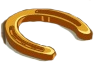 Golden Horseshoe-icon