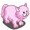 Pink Persian Cat-icon