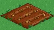 Plik:Wheat 00.png