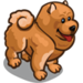 Chow Chow-icon