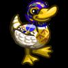 Royal Mallard Duck-icon
