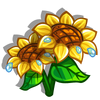Beach Sunflower-icon