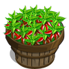 Bird's Eye Chillies Bushel-icon