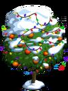 Blood Orange Tree10-icon