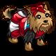 Cheerleader Yorkie-icon