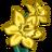 Daffodils-icon