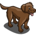Labrador Retriever-icon