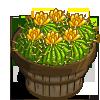 Barrel Cactus (Wild West) Bushel-icon