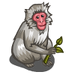 Japanese Macaque-icon
