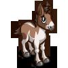 Kiang Foal-icon