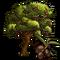 Koreneiki Olive Tree-icon
