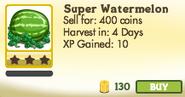 Super Watermelon Unlocked