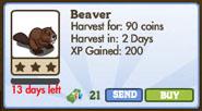 Beaver Market Info (January 2012)